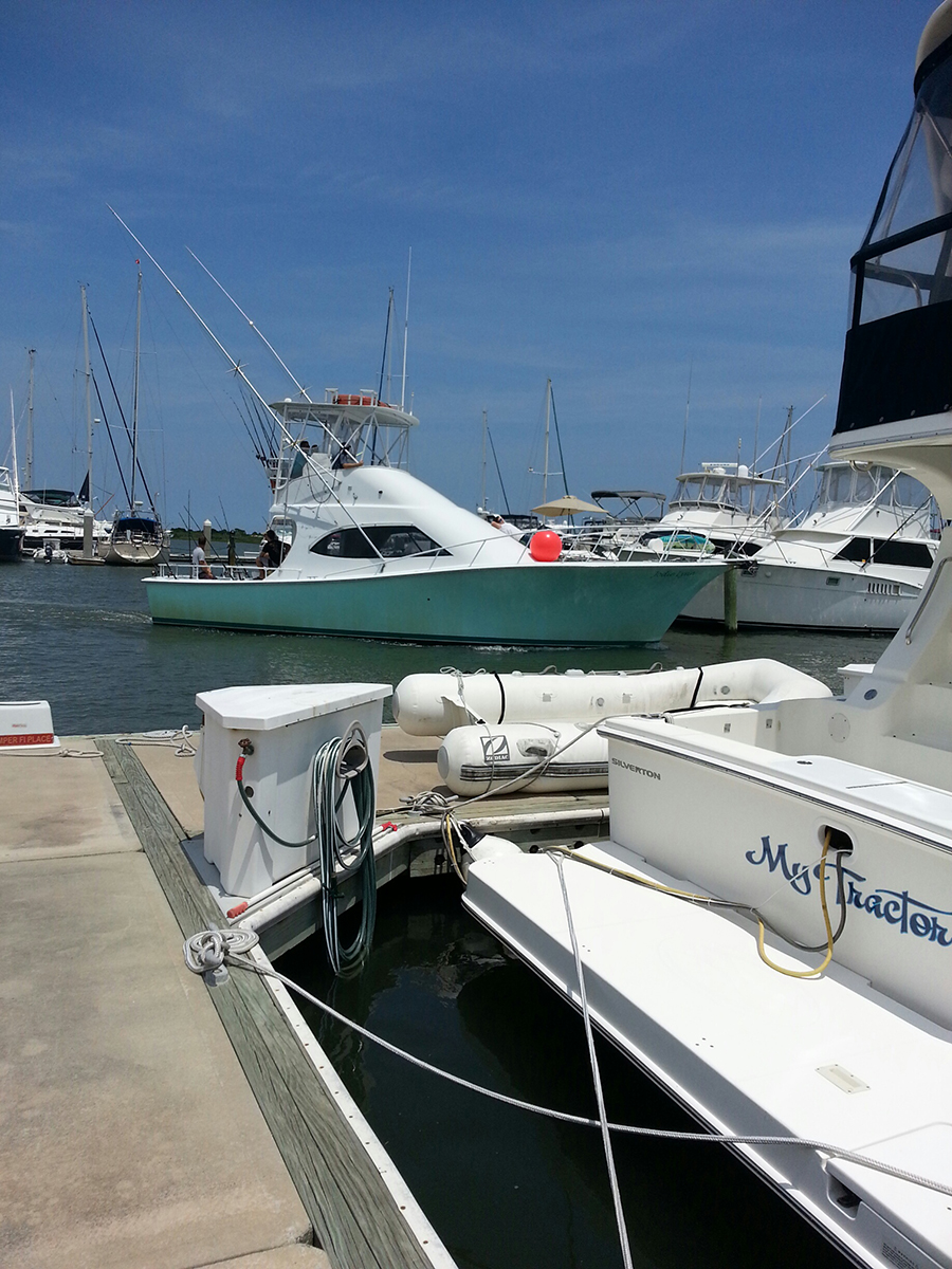 St augustine fishing charters deep sea fishing st for Sport fishing charters